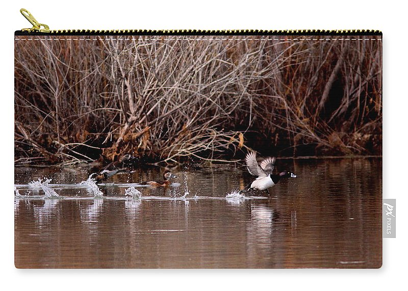 Duck Carry-all Pouch featuring the photograph Duck - Ring-necked - Runway by Travis Truelove