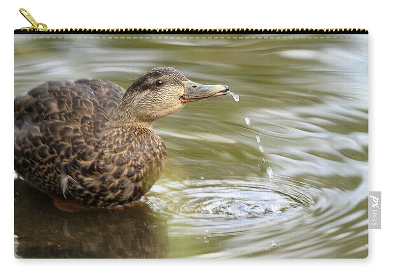 Duck Carry-all Pouch featuring the photograph Duck Spits by Karol Livote