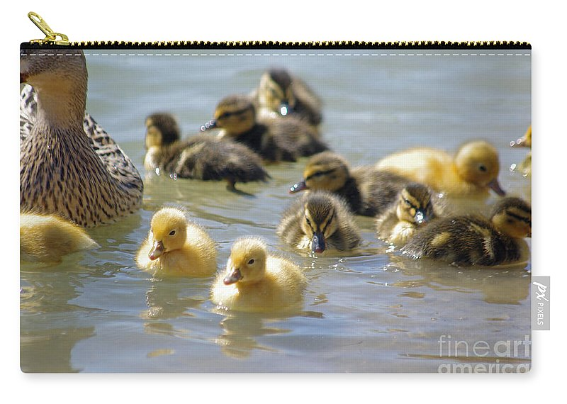 Duck Carry-all Pouch featuring the photograph Ducklings 09 by J M Lister