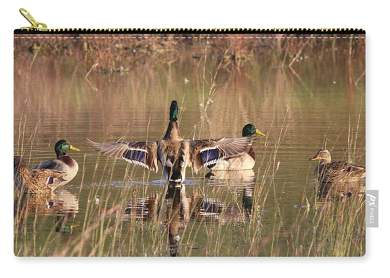 Nature Carry-all Pouch featuring the photograph Ducks Of Douglas by Travis Truelove