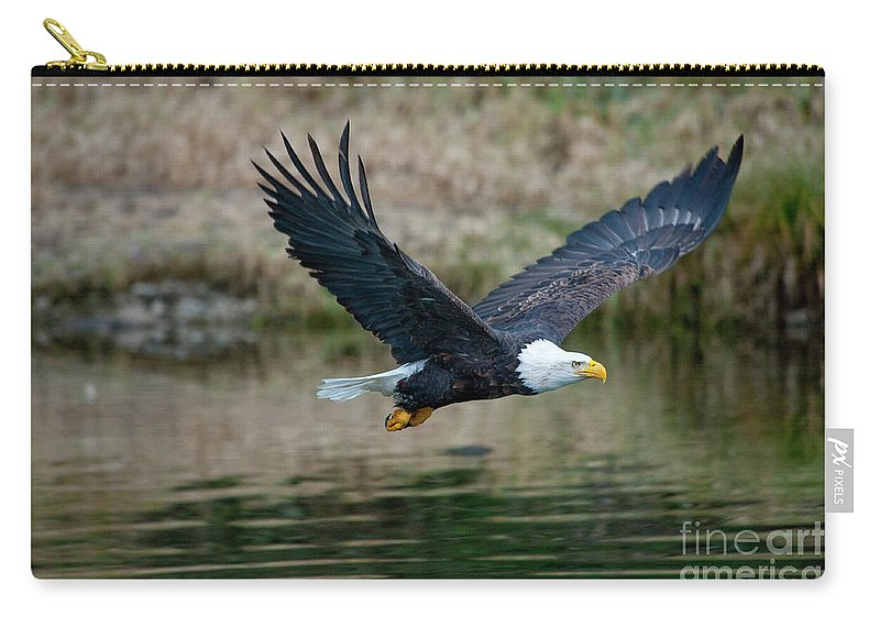 Eagle Carry-all Pouch featuring the photograph Eagle In Flight by Rod Wiens