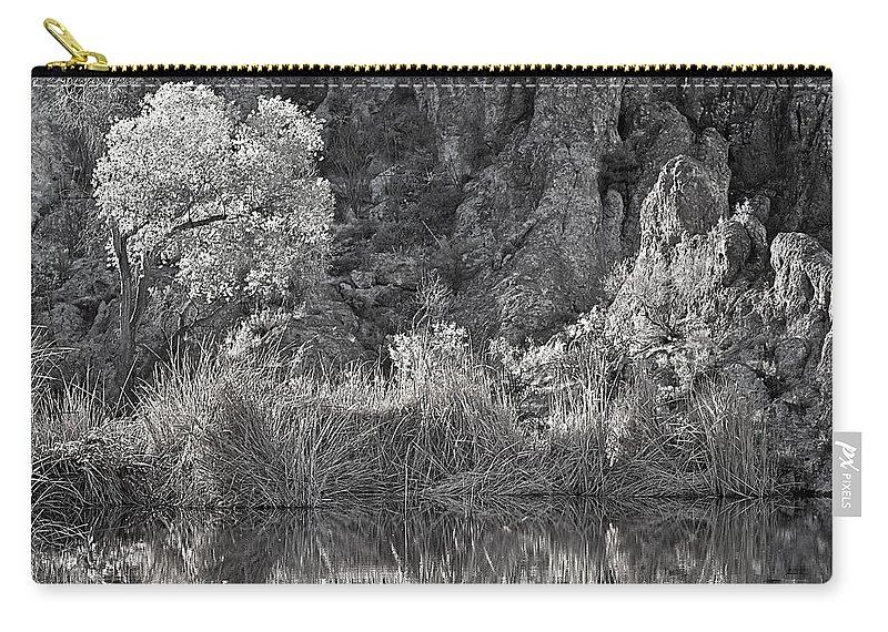 Landscape Carry-all Pouch featuring the photograph Early Morning Light Black And White by Phyllis Denton