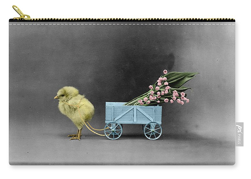 Chick Carry-all Pouch featuring the photograph Easter Chick by Andrew Fare
