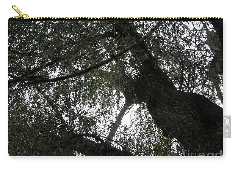 Tree Carry-all Pouch featuring the photograph Elders Above by Art Dingo