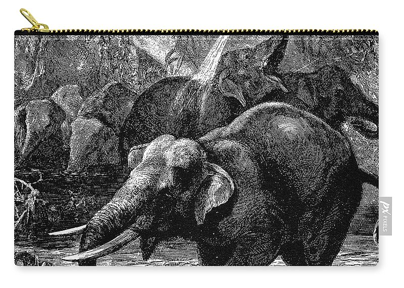 19th Century Carry-all Pouch featuring the photograph Elephants by Granger