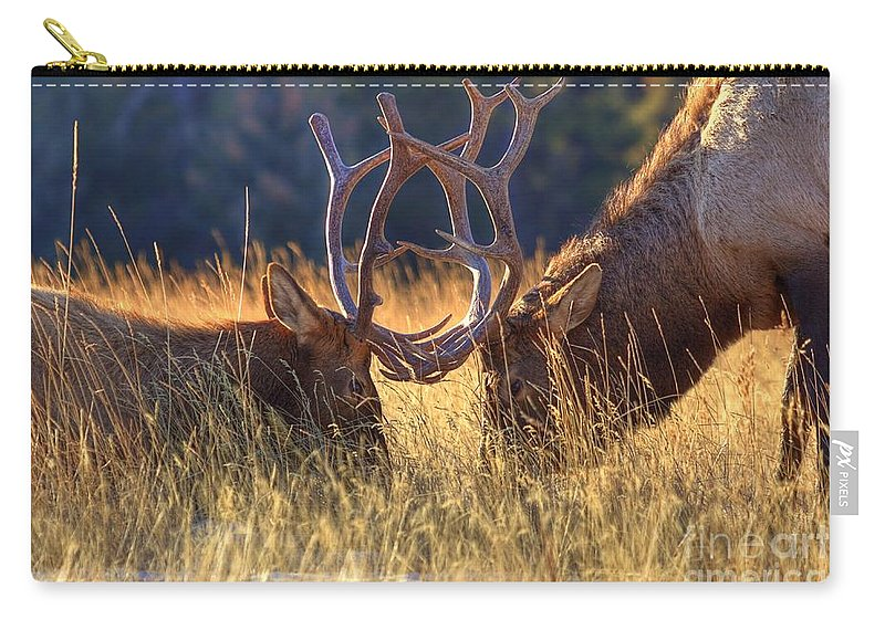 Lake Minnewanka Carry-all Pouch featuring the photograph Elk 2 Elk by James Anderson