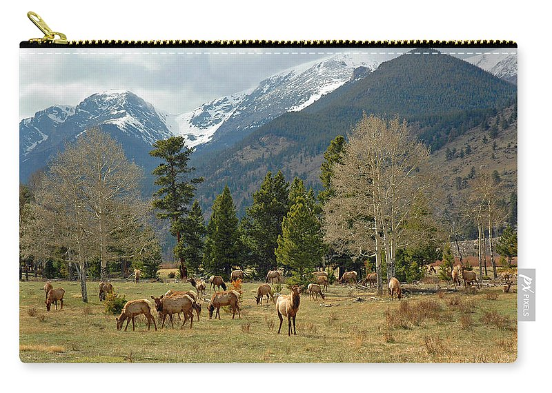 Rockies Carry-all Pouch featuring the photograph Elk In The Rockies by Lynn Bauer
