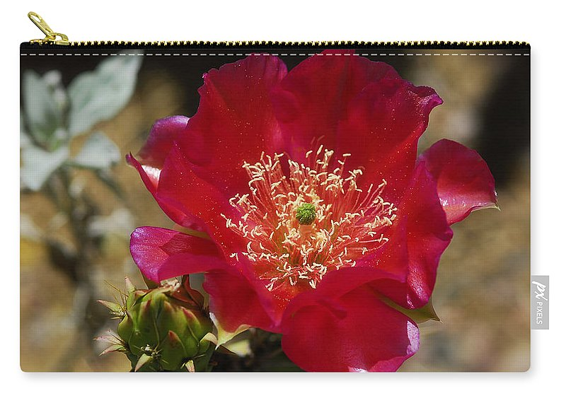 Englemann's Prickly Pear Cactus. Englemann's Carry-all Pouch featuring the photograph Englemann's Prickly Pear Cactus by Saija Lehtonen