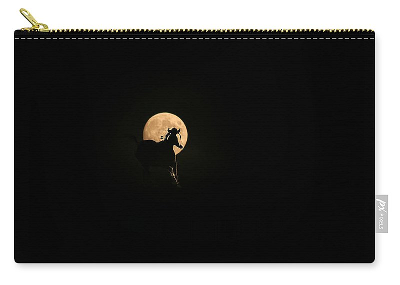 Horse Running Carry-all Pouch featuring the photograph Evening Run by Andrea Lawrence