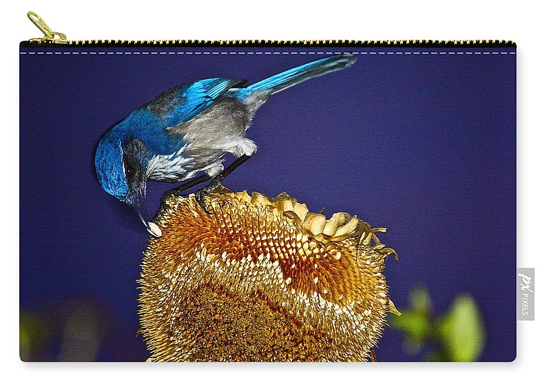 Birds Carry-all Pouch featuring the photograph Evening Snack by Diana Hatcher