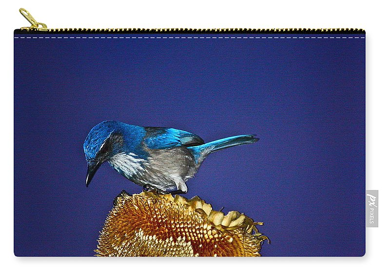 Birds Carry-all Pouch featuring the photograph Evening Visitor by Diana Hatcher
