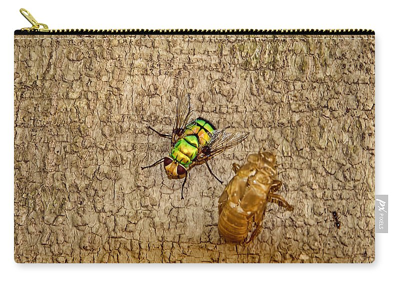 Fly Carry-all Pouch featuring the photograph Evolving Nature by Douglas Barnard