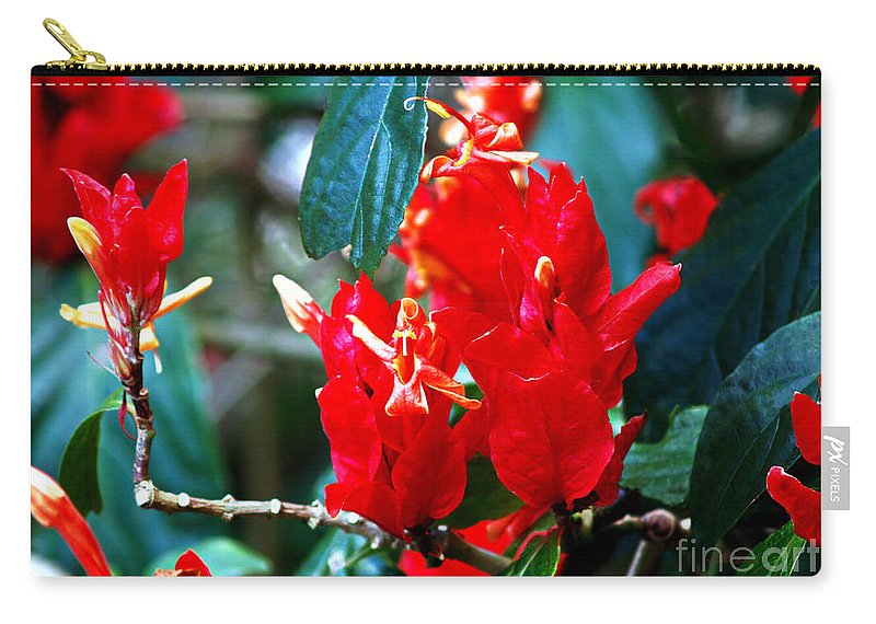 Fine Art Print Carry-all Pouch featuring the photograph Excitement by Patricia Griffin Brett