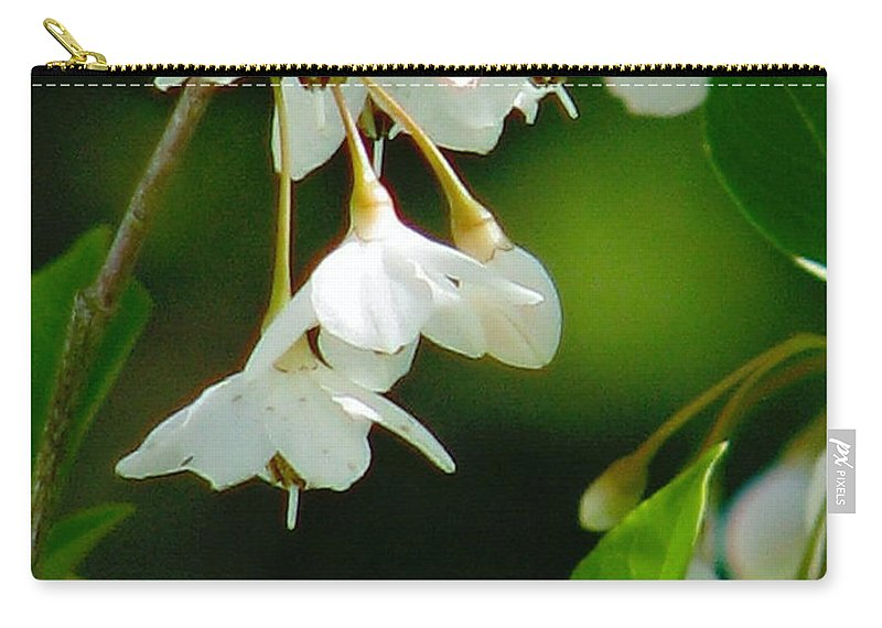 Flowers Carry-all Pouch featuring the photograph Faerie Bells 2 by Rory Sagner