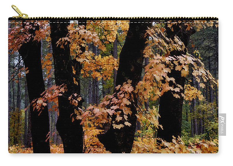 Fall Foliage Carry-all Pouch featuring the photograph Fall Beckons by Saija Lehtonen