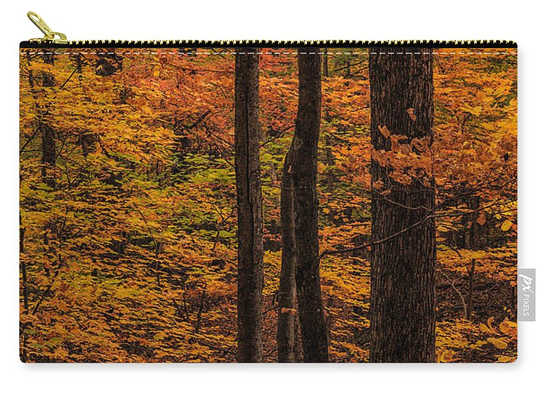 Fall Carry-all Pouch featuring the photograph Fall Forest by Charlie Choc