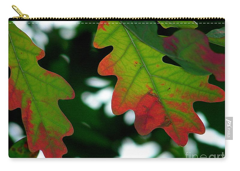 Leaves Carry-all Pouch featuring the photograph Fall L Eaves by Mark Gilman