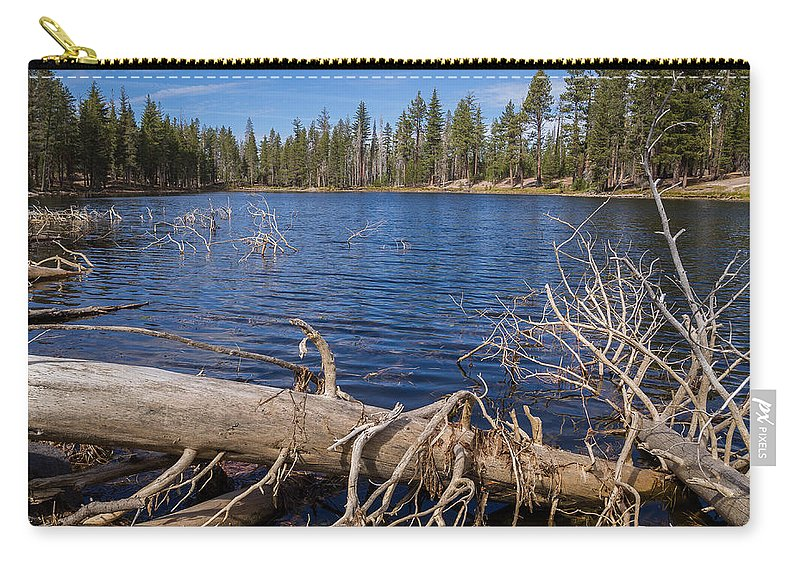 Lassen Volcanic National Park Carry-all Pouch featuring the photograph Fall Logs On Reflection Lake by Greg Nyquist