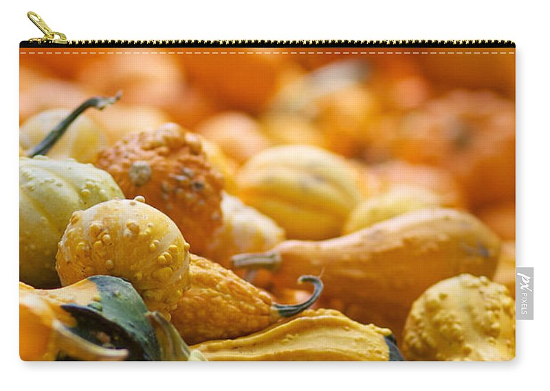 Fall Squash Carry-all Pouch featuring the photograph Fall Squash Variety by Brooke Roby