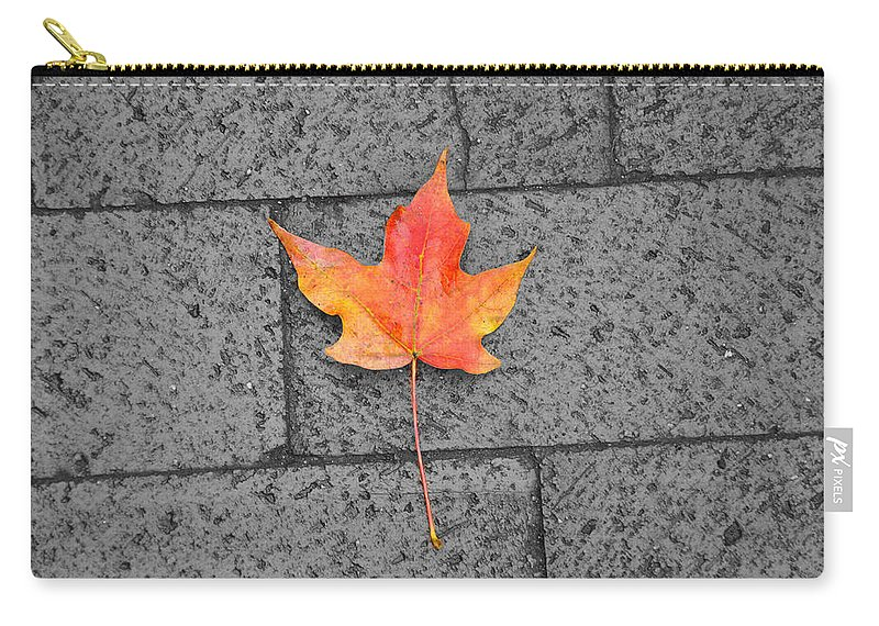 Washington Dc Carry-all Pouch featuring the photograph Fallen Leaf by Brittany Horton