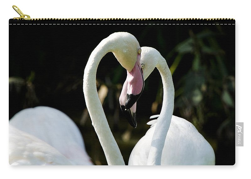Pink Flamingos Carry-all Pouch featuring the photograph Falling In Love by Saija Lehtonen