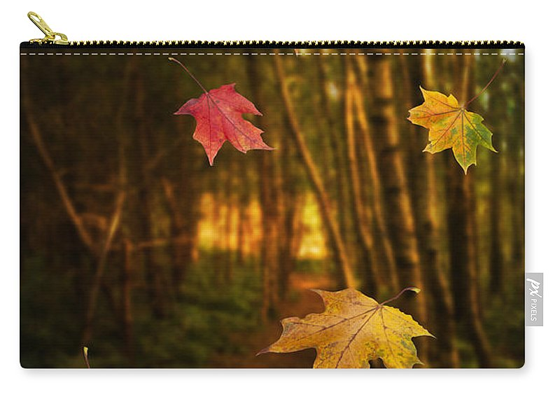 Autumn Carry-all Pouch featuring the photograph Falling Leaves by Amanda Elwell