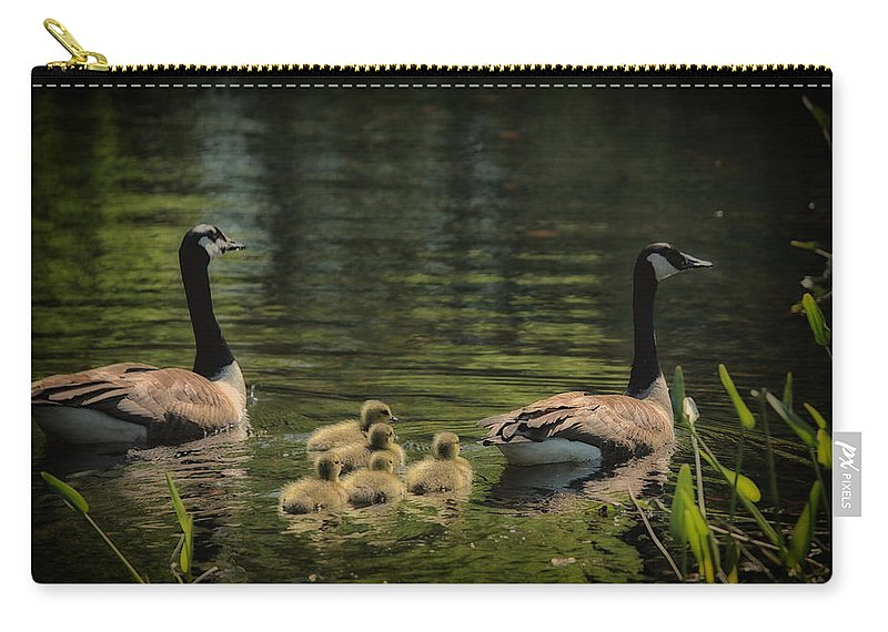 Canadian Geese Carry-all Pouch featuring the photograph Family Outing by Karol Livote