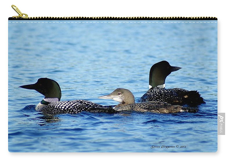 Loon Carry-all Pouch featuring the photograph Family Swim 2 by Steven Clipperton