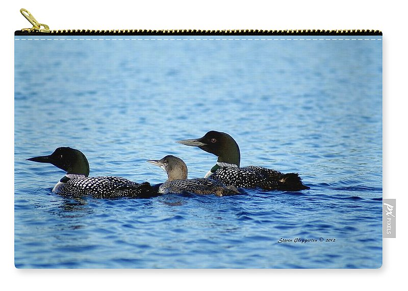 Loon Carry-all Pouch featuring the photograph Family Swim 3 by Steven Clipperton