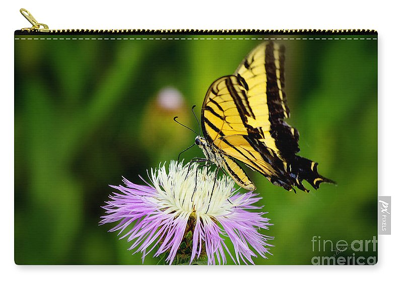 Photograph Carry-all Pouch featuring the photograph Fancy Free by Vicki Pelham