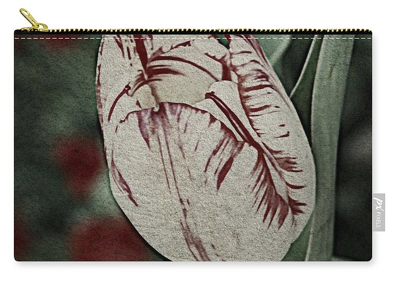 Nature Carry-all Pouch featuring the photograph Feathered Markings by Chris Berry