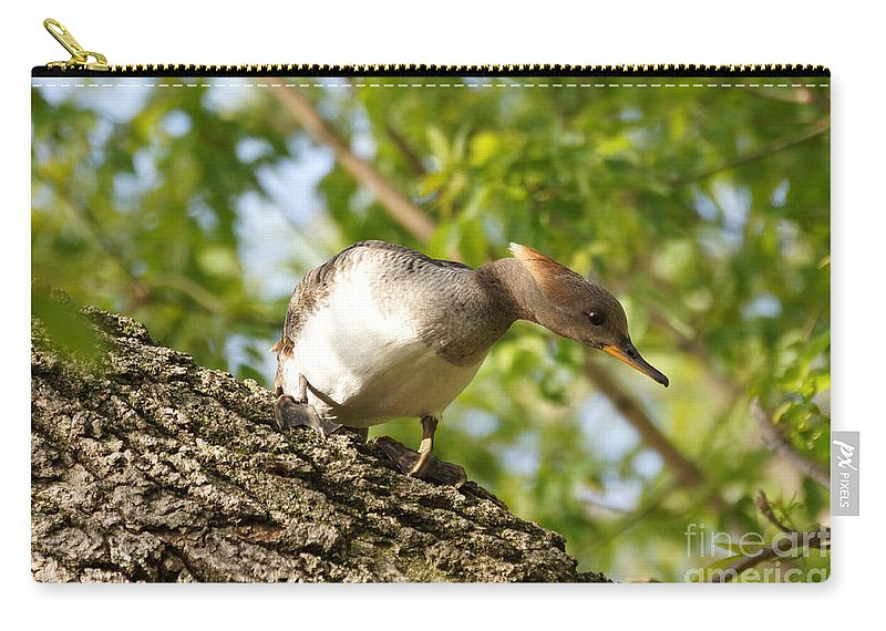 Merganser Carry-all Pouch featuring the photograph Female Hooded Merganser by Lori Tordsen