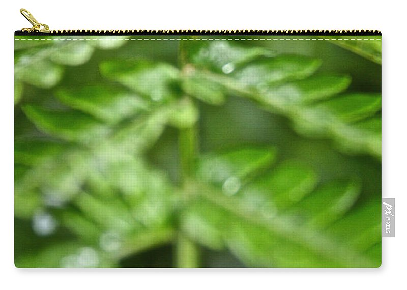 Tropical Plant Carry-all Pouch featuring the photograph Fern by Susan Herber