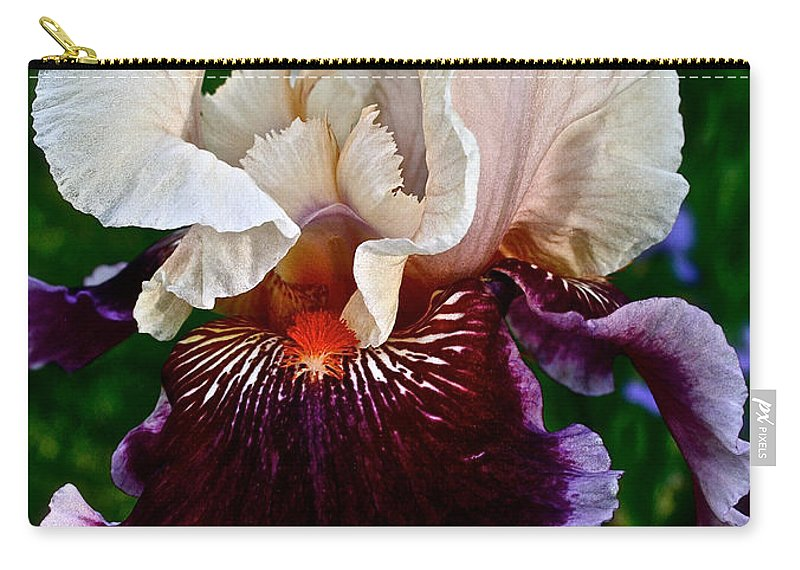 Plant Carry-all Pouch featuring the photograph Festive Iris by Susan Herber