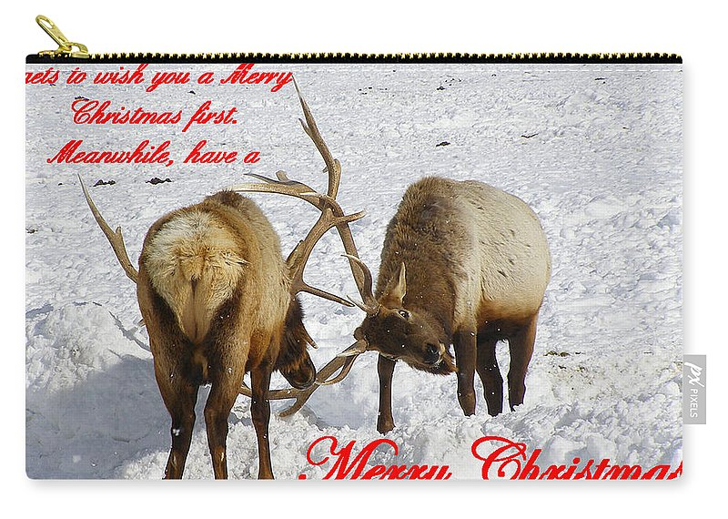 Christmas Cards Carry-all Pouch featuring the photograph Fighting Over Wishing You A Merry Christmas by DeeLon Merritt