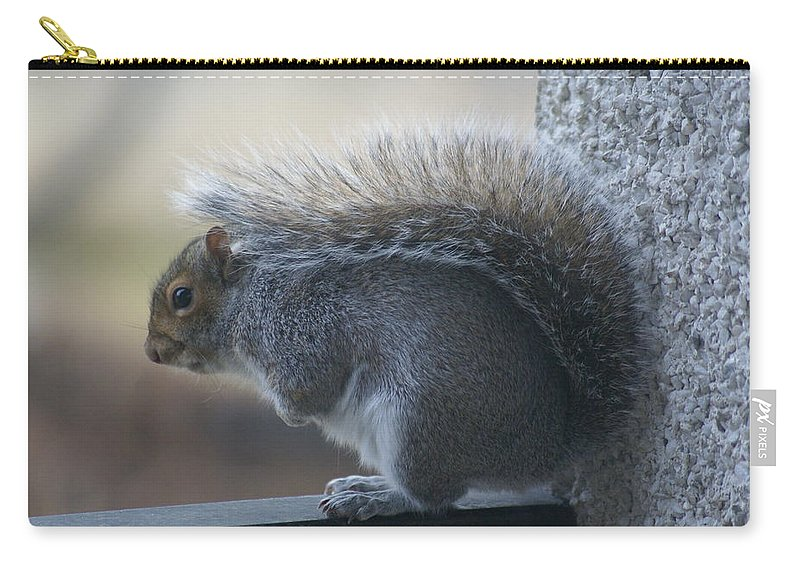 Squirrels Carry-all Pouch featuring the photograph Fighting The Wind Chill by Ben Upham III