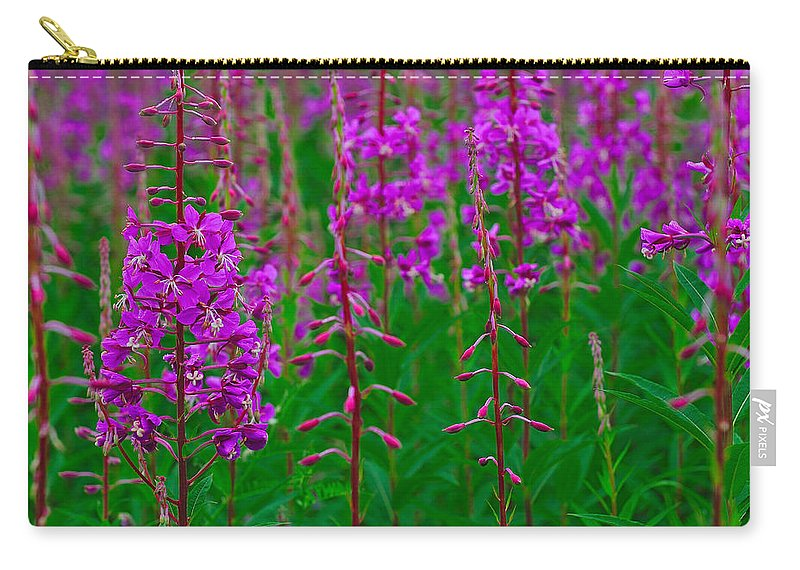 Epilobium Angustifolium Carry-all Pouch featuring the photograph Fireweed by Tony Beck
