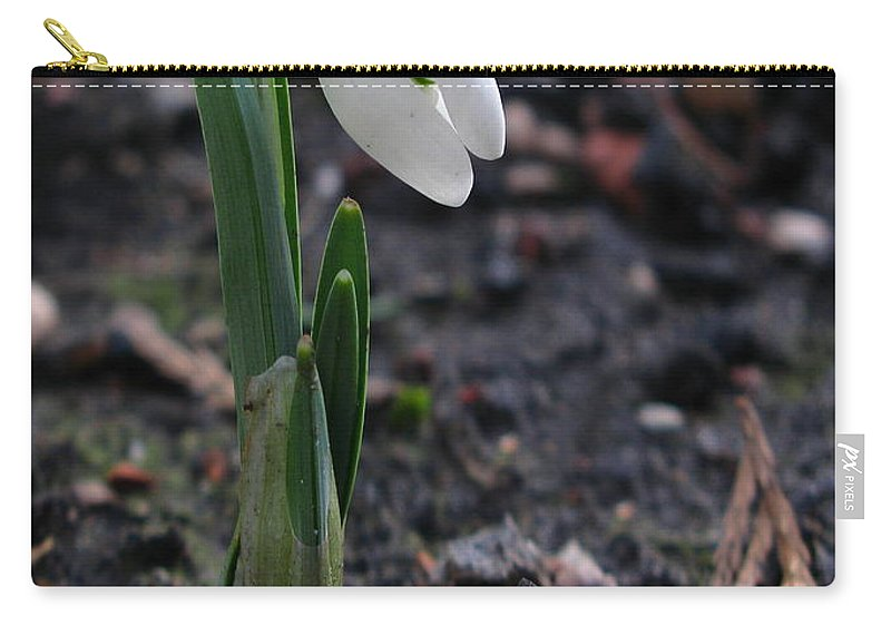 First Snowdrop Carry-all Pouch featuring the photograph First Snowdrop by John Chatterley