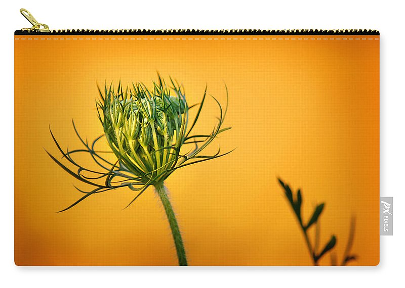 Wildflower Carry-all Pouch featuring the photograph Fixn' To Bloom by Bill Pevlor