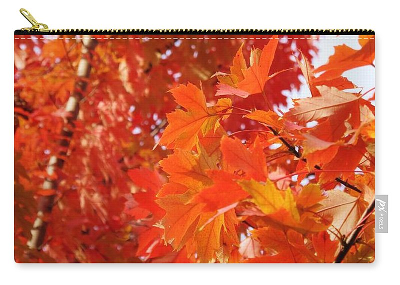 Maple Carry-all Pouch featuring the photograph Flaming Maples by Ian MacDonald