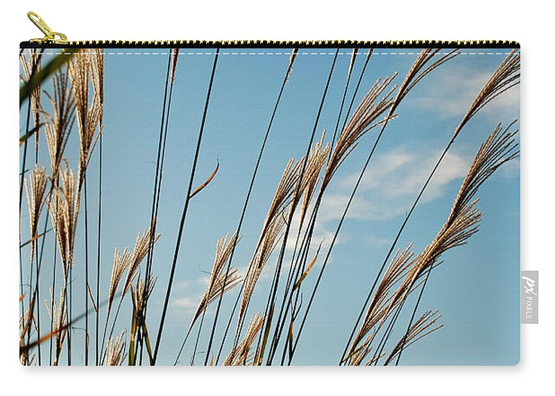 Grasses Carry-all Pouch featuring the photograph Flare 3 by Mark Dodd