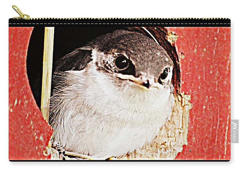 Bird Carry-all Pouch featuring the digital art Fledgling by Kathy Sampson