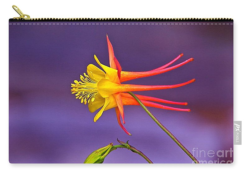 Flight Of Fancy Carry-all Pouch featuring the photograph Flight Of Fancy by Byron Varvarigos
