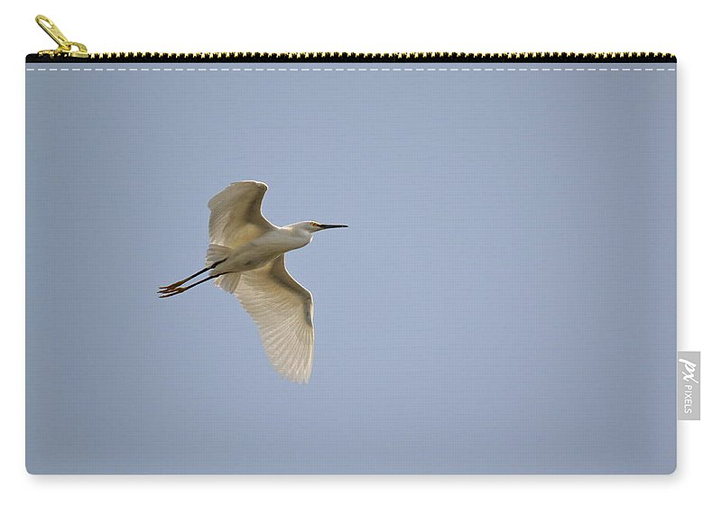 Birds Carry-all Pouch featuring the photograph Flight Practice by Diana Hatcher
