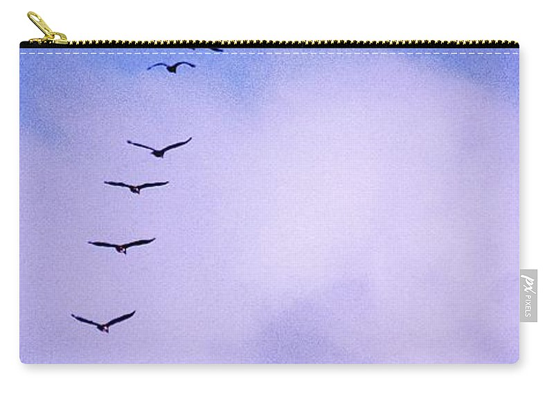 Africa Carry-all Pouch featuring the photograph Flight Stripe by Alistair Lyne
