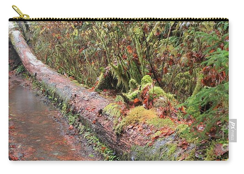 Hoh Rainforest Carry-all Pouch featuring the photograph Flooded Bridge by Adam Jewell
