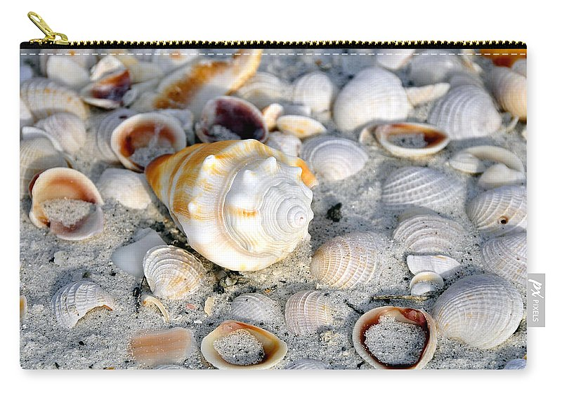 Fine Art Photography Carry-all Pouch featuring the photograph Florida Shells by David Lee Thompson