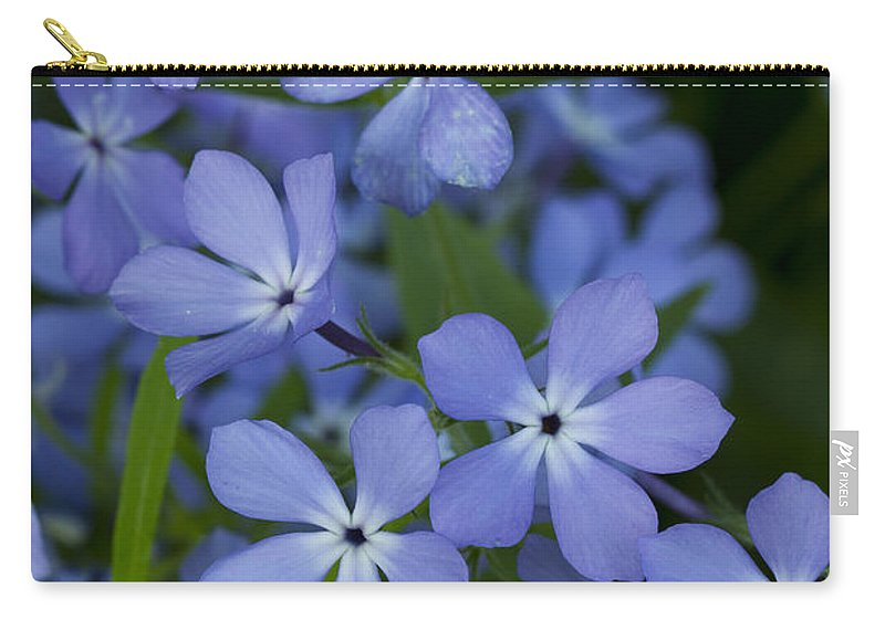 Bloom Carry-all Pouch featuring the photograph Flower Wild Blue Phlox 1 B by John Brueske