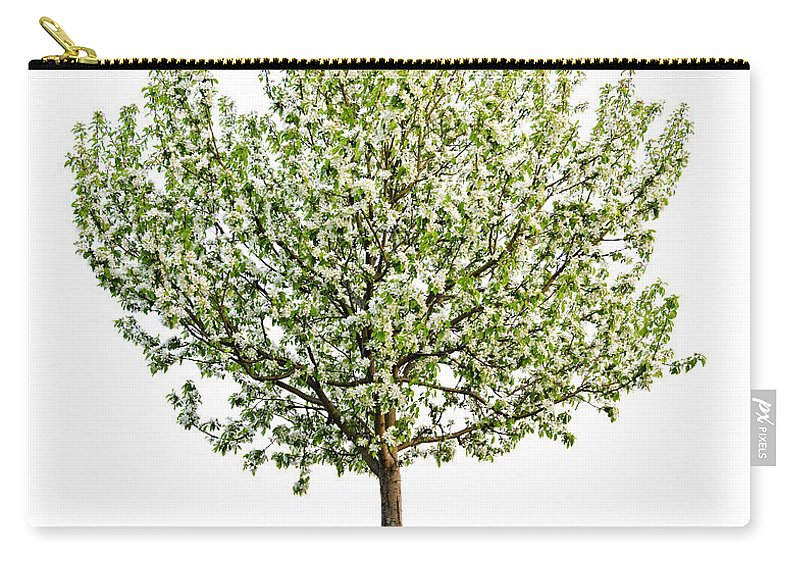 Tree Carry-all Pouch featuring the photograph Flowering Apple Tree by Elena Elisseeva