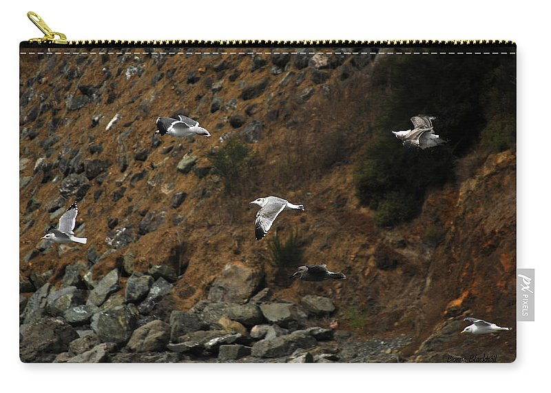 Birds Carry-all Pouch featuring the photograph Flying For Dummies by Donna Blackhall